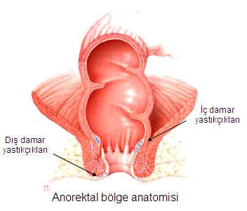 anorektal-bolge