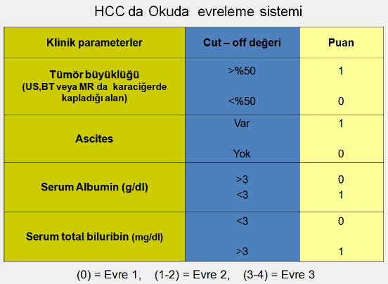 HCCyeni1