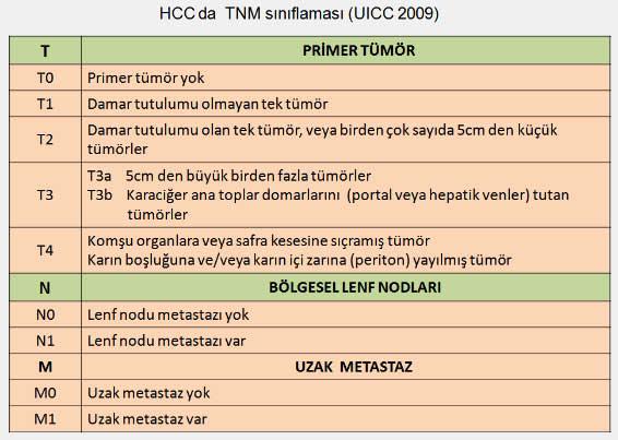 HCCyeni4