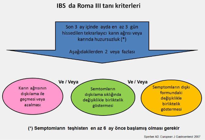 IBSyeni13