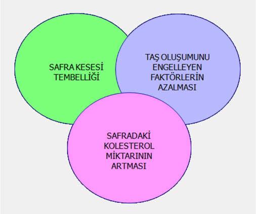 Safraetyo