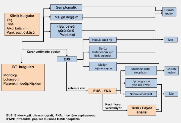 pankreaskist1